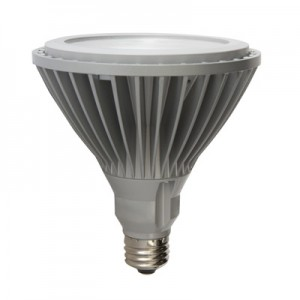 GE 63104 PAR LED Bulbs
