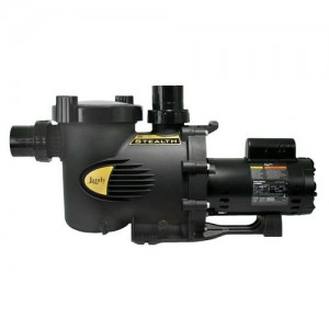 Jandy SHPM2.0-2 In-Ground Pool Pumps