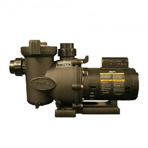 Jandy FHPM2.5 In-Ground Pool Pumps