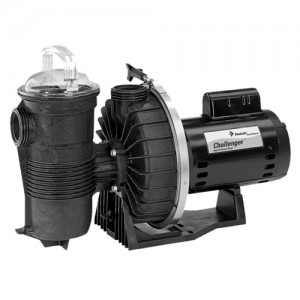 Pentair 345204 In-Ground Pool Pumps