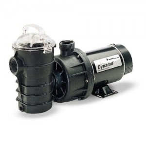 Pentair 340290 Above-Ground Pool Pumps