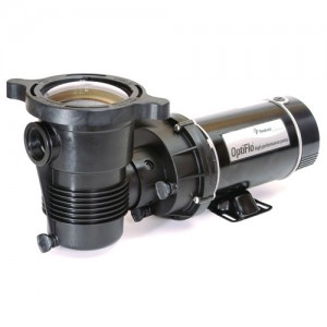 Pentair 347983 Above-Ground Pool Pumps