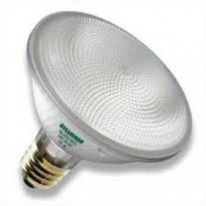Sylvania 75PAR30/HAL/SPL/NSP9 Light Bulbs