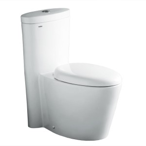 Ariel Bath CO1009 Residential Toilets