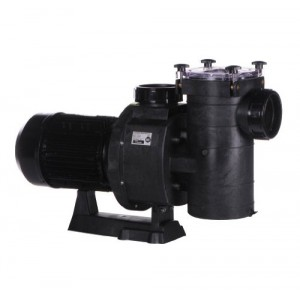 Hayward HCP125 In-Ground Pool Pumps