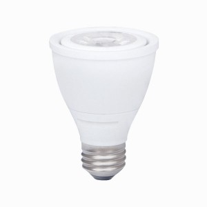 Ushio 1003869 PAR LED Bulbs