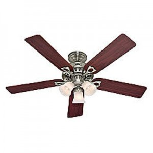 Hunter 22438 Ceiling Fan