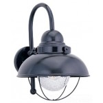 Sea Gull Lighting 8871-12